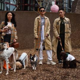 Street Outfits.London Women Fashion Week